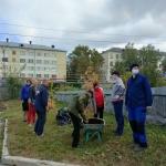 21-09-10-Novye-derevia-ryabiny-05