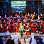 Новый год с оркестром 28.12.2019